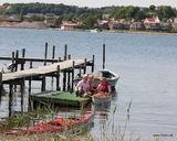 Galleri - billedvisning - Mariagerfjordkajak.dk